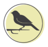 A representation of a bird on a green circle