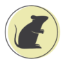 A representation of a mouse on a green clrcle