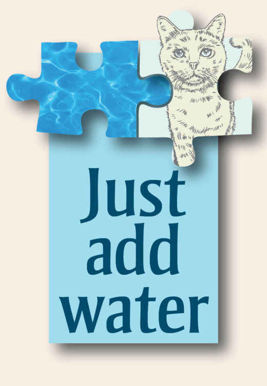 Just Add Water text with cat and water puzzle pieces