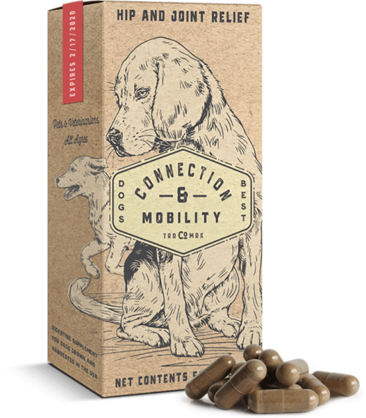 A conceptual packaging for a dog supplement