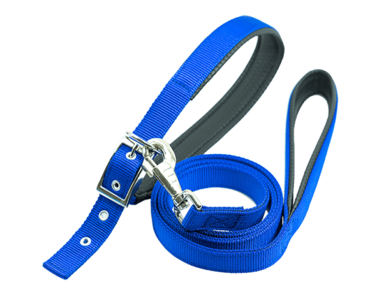 blue coiled nylon leash and collar