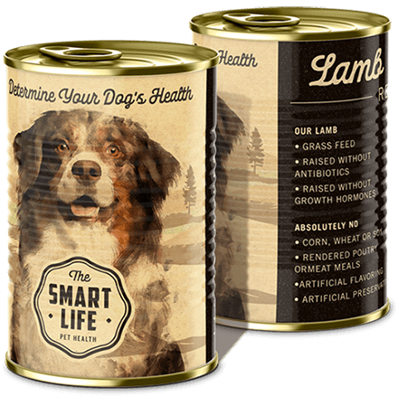 A photographic concept of canned dog good