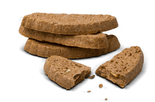 Dog biscuits in the shape of biscotti