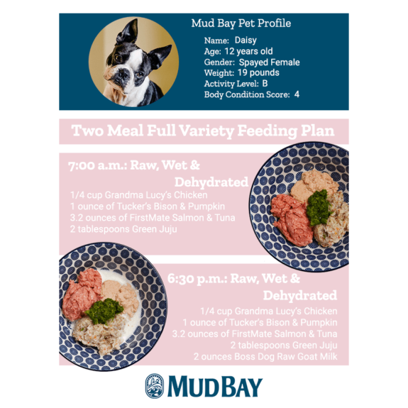 Two Meal Full Variety Feeding Plan for Dogs