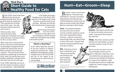 Short Guide to Healthy Food for Cats Thumbnail
