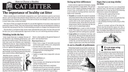 How to Choose a Healthy Cat Litter Thumbnail