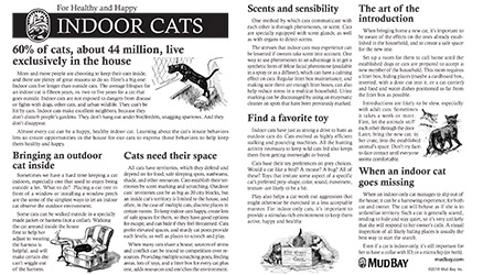 For Healthy and Happy Indoor Cats Thumbnail