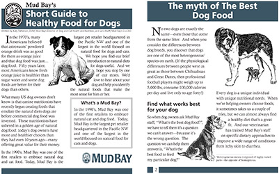 Short Guide to Healthy Food for Dogs Thumbnail