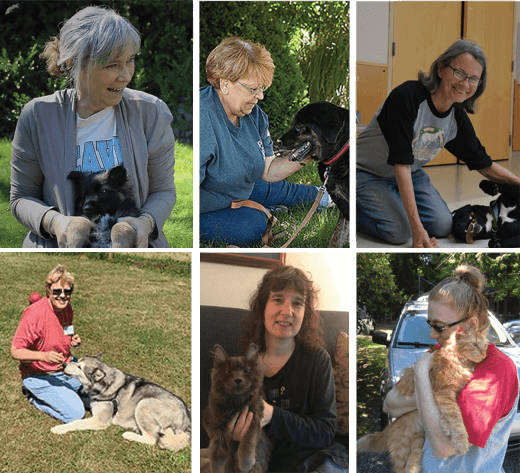 Images of six volunteer award of excellence winners in 2019