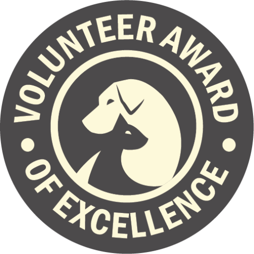 Volunteeer Award of Excellence LOGO