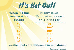 It's Hot Out Graphic